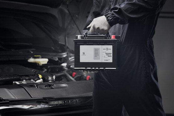peugeot 308 batteria