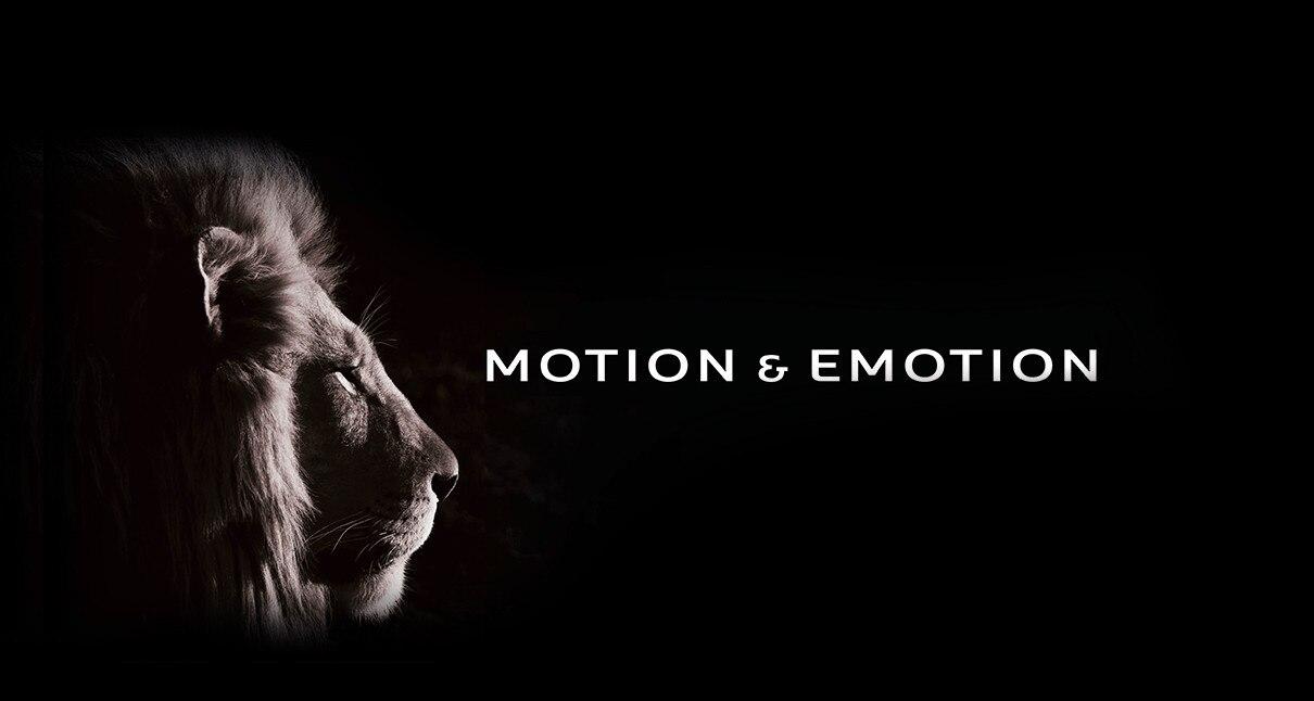 Motion Emotion